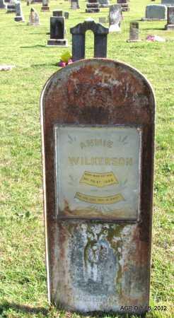 WILKERSON, ANNIE - Cleburne County, Arkansas | ANNIE WILKERSON - Arkansas Gravestone Photos