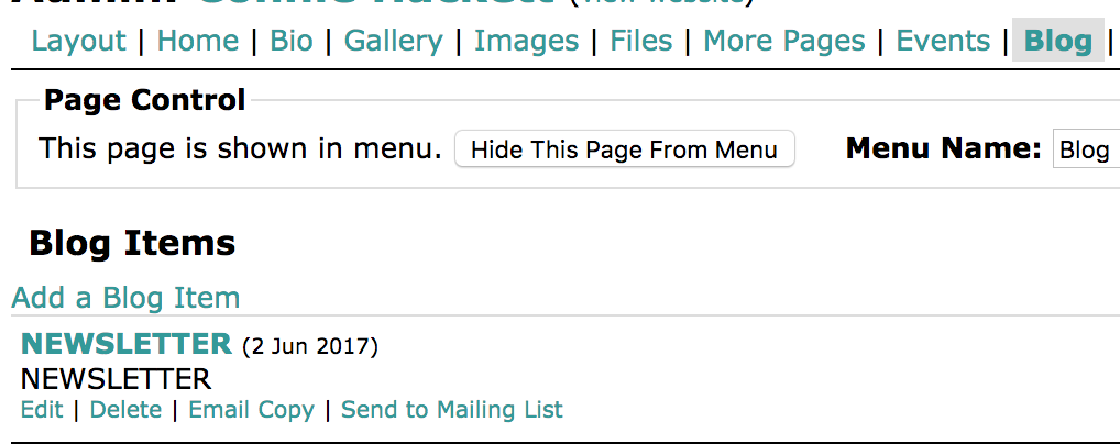 Blog Items List