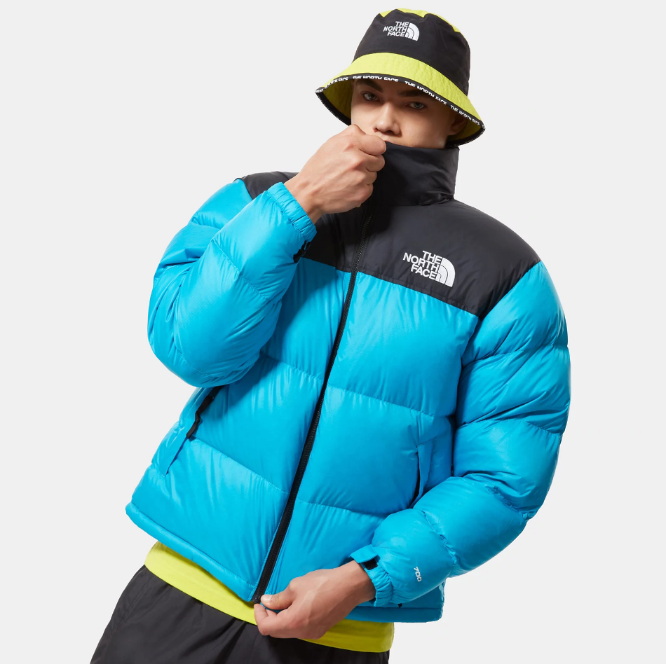 Giubbotto The North Face THE NORTH FACE | -276790253 | NF0A3C8DD7R1