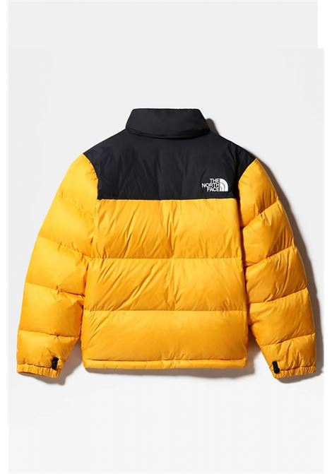 Giubbotto The North Face THE NORTH FACE | -276790253 | NF0A3C8DD56P