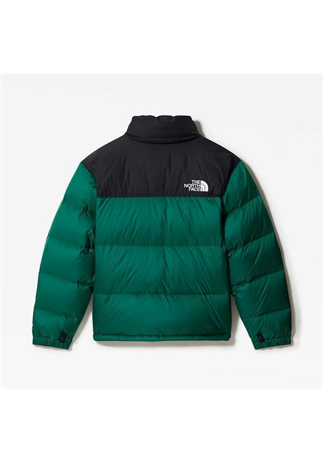 THE NORTH FACE | -276790253 | NF0A3C8DDNL1