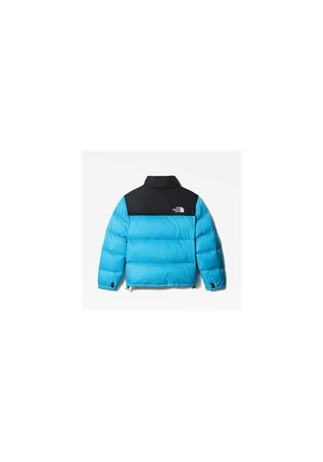 Jacket The North Face THE NORTH FACE | -276790253 | NF0A3C8DD7R1