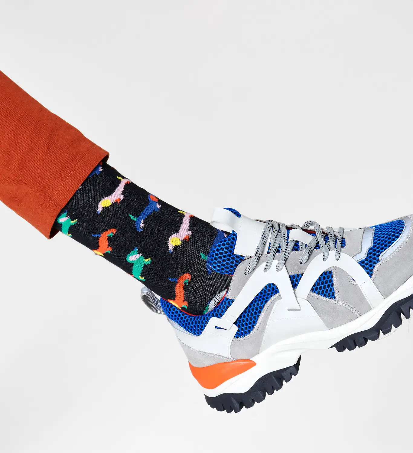 Calzini Puppy love  socks HAPPY SOCKS   WOOL PUPPY LOVE9300