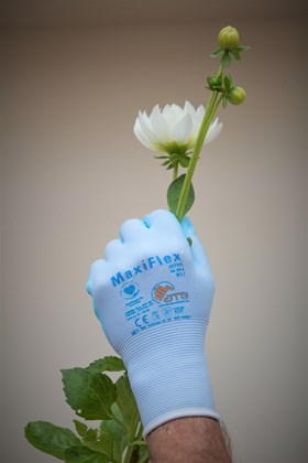 Gardening Gloves size 9 (white cuff)