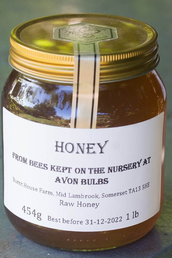 Honey - Runny