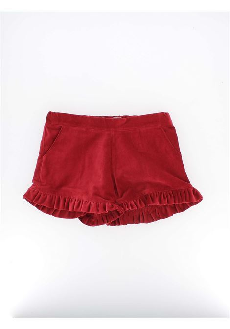 short in velluto PHI CLOTHING | Shorts | 19617BORDEAUX