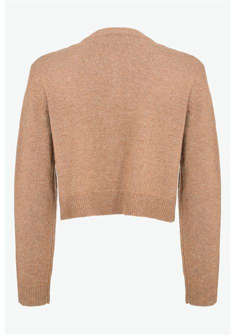 piastraia cardigan in lana PINKO | Cardigan | 1G16CE Y77RI50