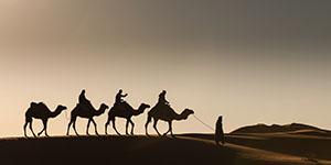 Abraham's Covenant