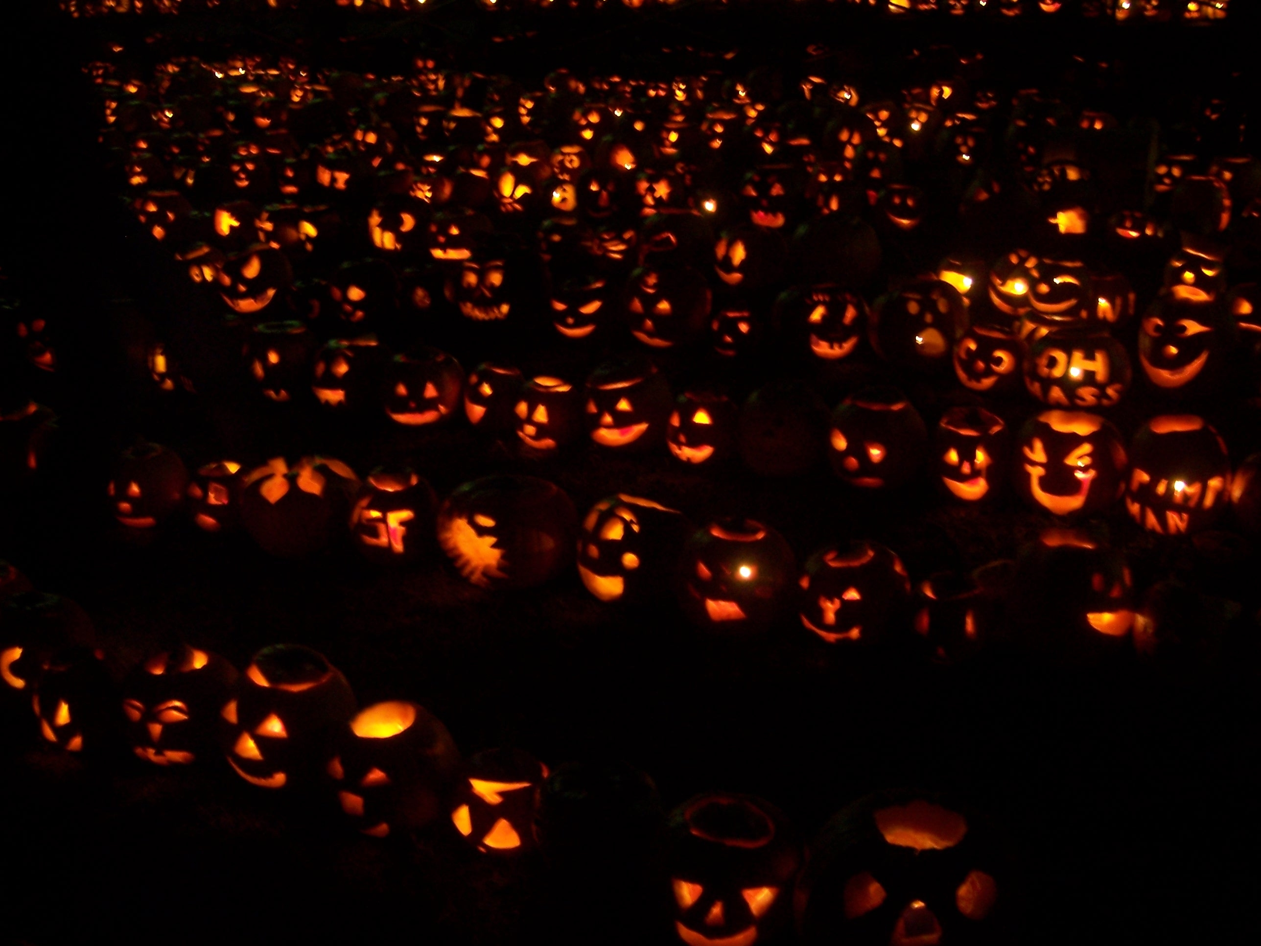 Spooktacular Jack O Lantern Festivals