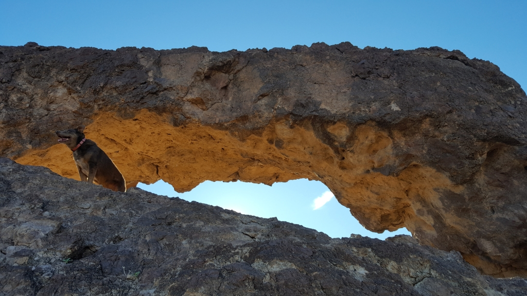 Tiny Arch