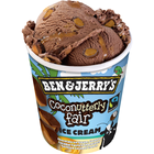 Ben & Jerry´s Coconutterly Fair