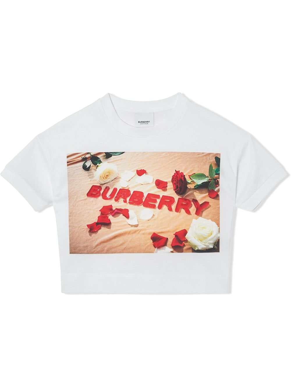 BURBERRY KIDS |  | 8036910A1464#