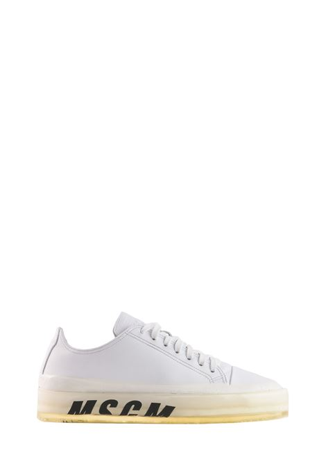 FLOATING SNEAKER WITH TRANSPARENT SOLE MSGM | Sneakers | 2641MDS72516001