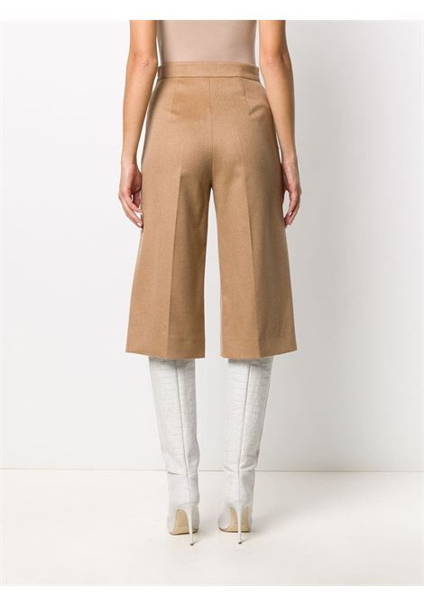 Pantalone MAX MARA | SHORTS | 11460806600362001