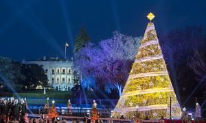 National Christmas Tree IIP Photo Archive Washington, DC, USA [CC BY 2.0] via Wikipedia Commons