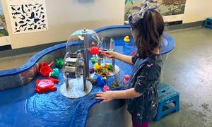 Potomac Watershed Exhibit, Shenandoah Valley Discovery Museum