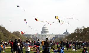 National Cherry Blossom Kite Festival, Washington, D.C.