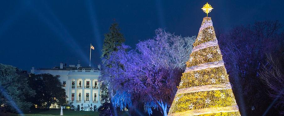 National Christmas Tree IIP Photo Archive Washington, DC, USA [CC BY 2.0] via Wikipedia Commons