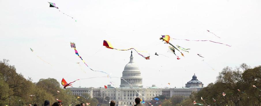 National Cherry Blossom Kite Festival, Washington, D.C.