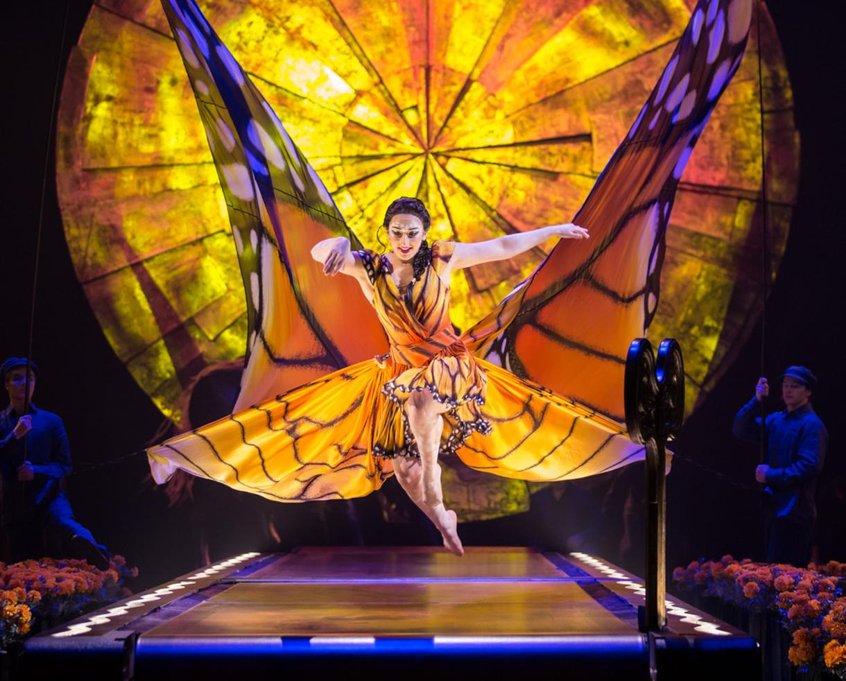 Up to 20% Off Cirque du Soleil's LUZIA at Tysons Corner