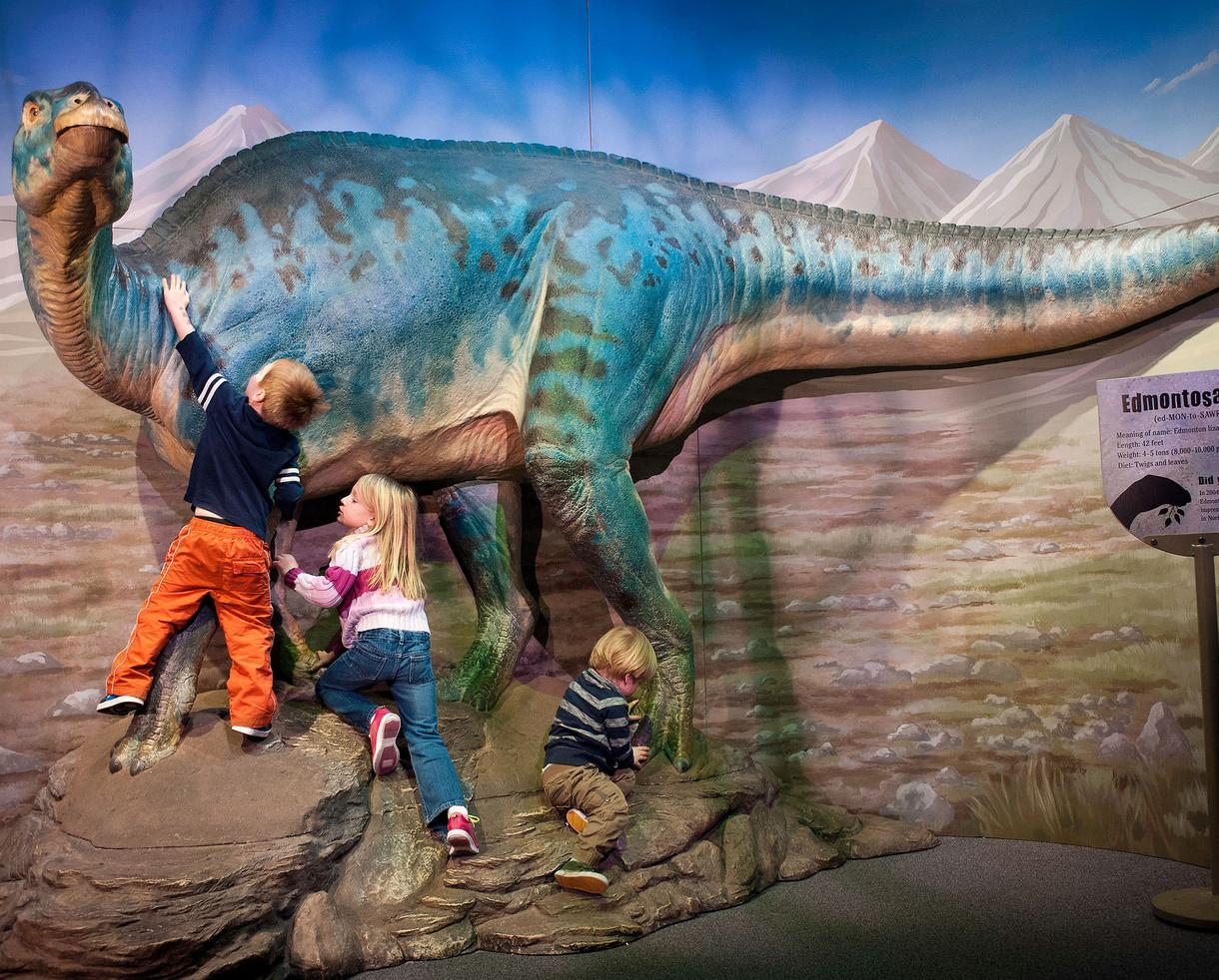 14-Month Family Membership for 4 People to Port Discovery Children's Museum