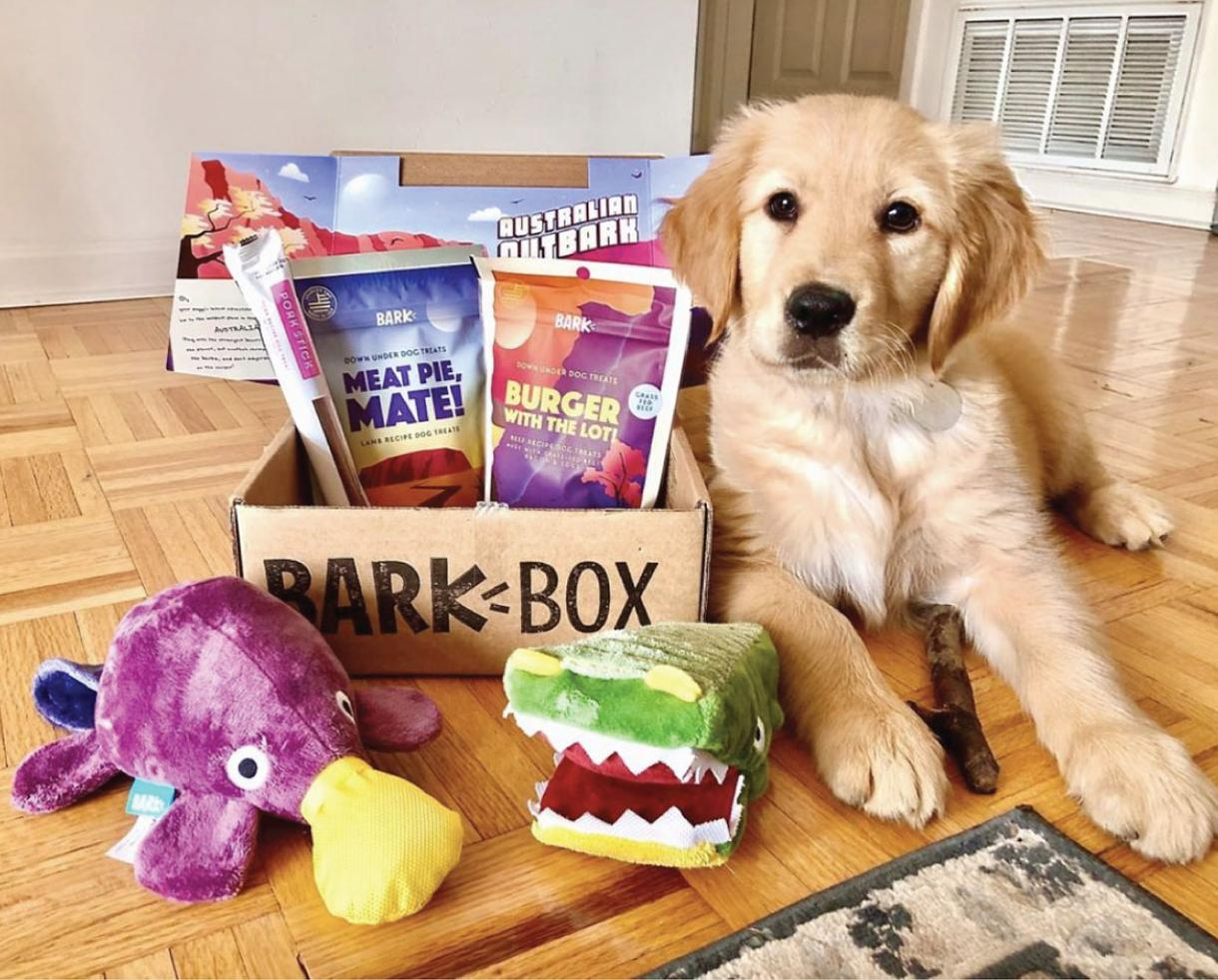 Get Double Your First BarkBox for FREE - Shipping Included!