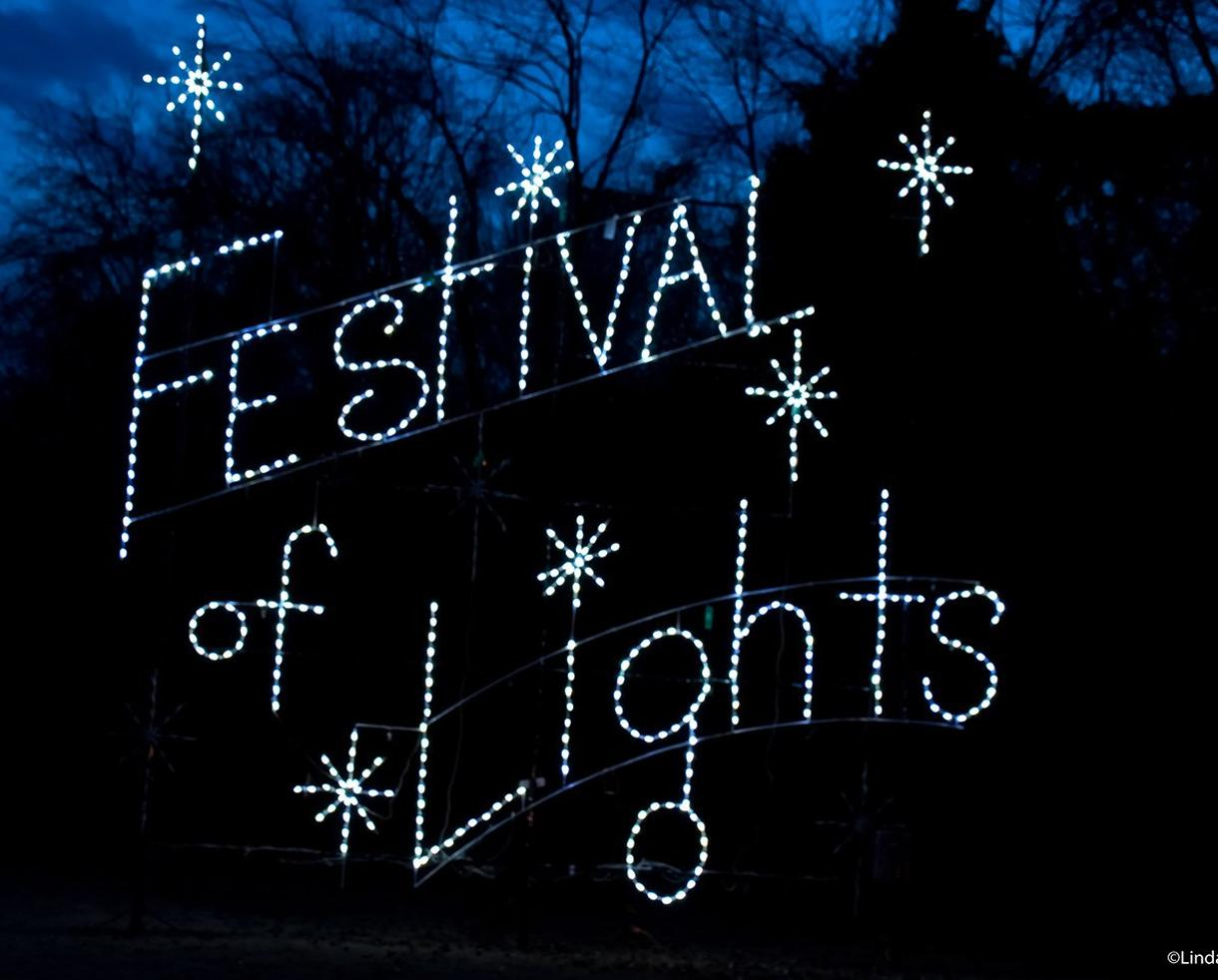 Bull Run Festival of Lights Weekday Admission for One Car