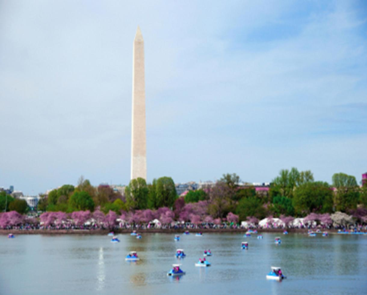 $22 for DC Weekday Sightseeing Cruise for FOUR People - CHERRY BLOSSOMS!! (50% Off - $44 Value)