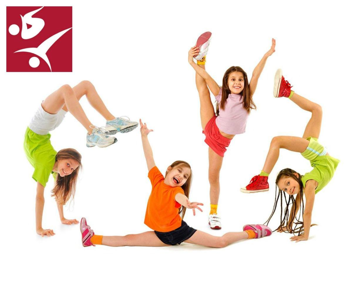 One 8-Week Session of Gymnastics or Tumbling Classes at Emilia's Acrobatic and Gymnastic Club