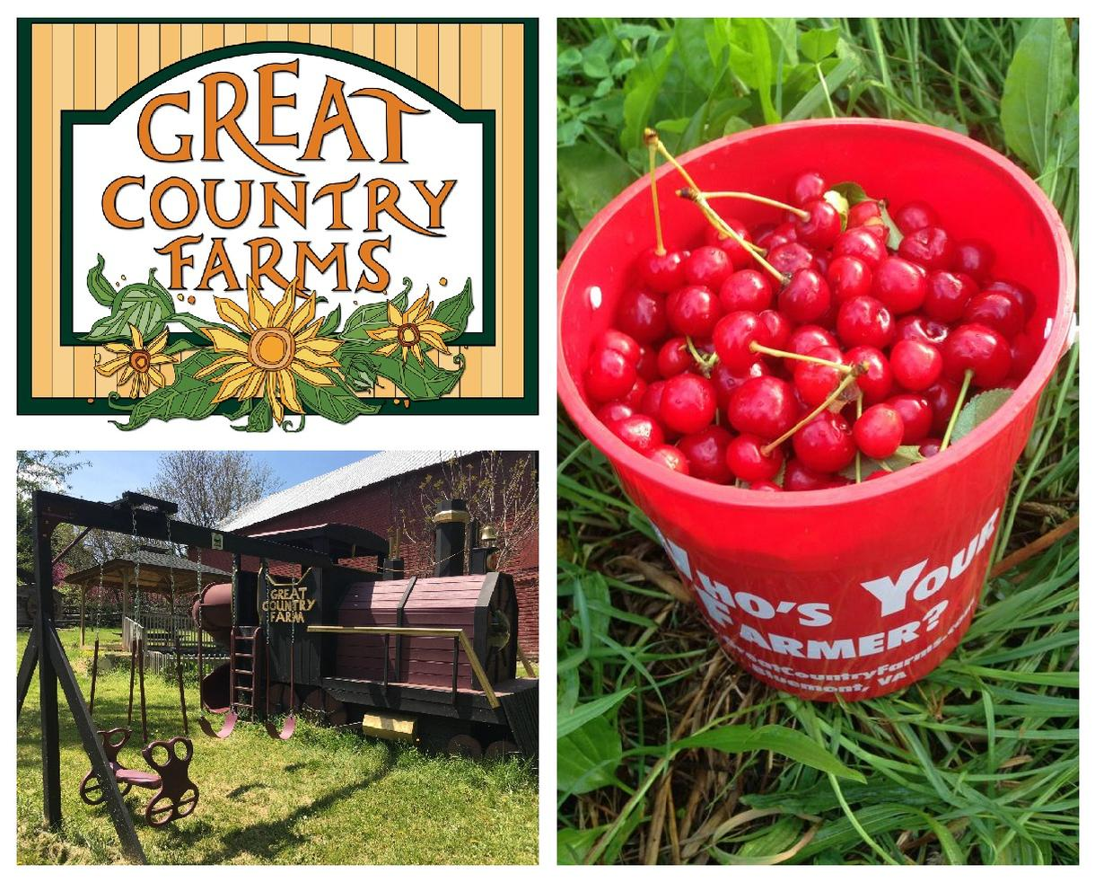 Great Country Farms Summer Admission & U-Pick Produce Voucher