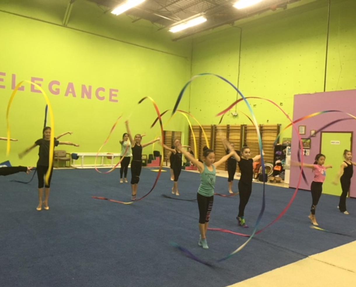 Elegance Rhythmic Gymnastics Camp