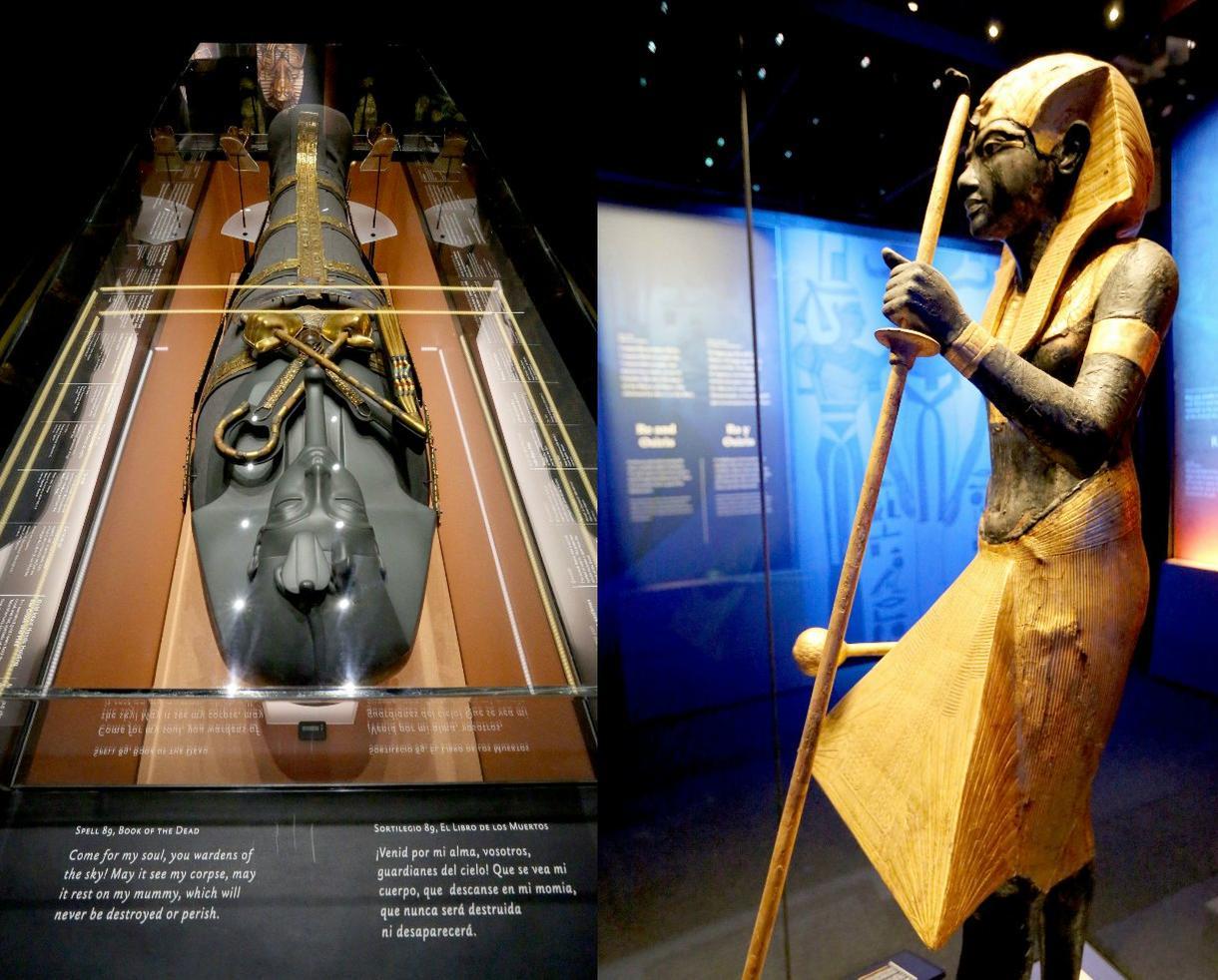 King Tut Exhibit at The California Science Center