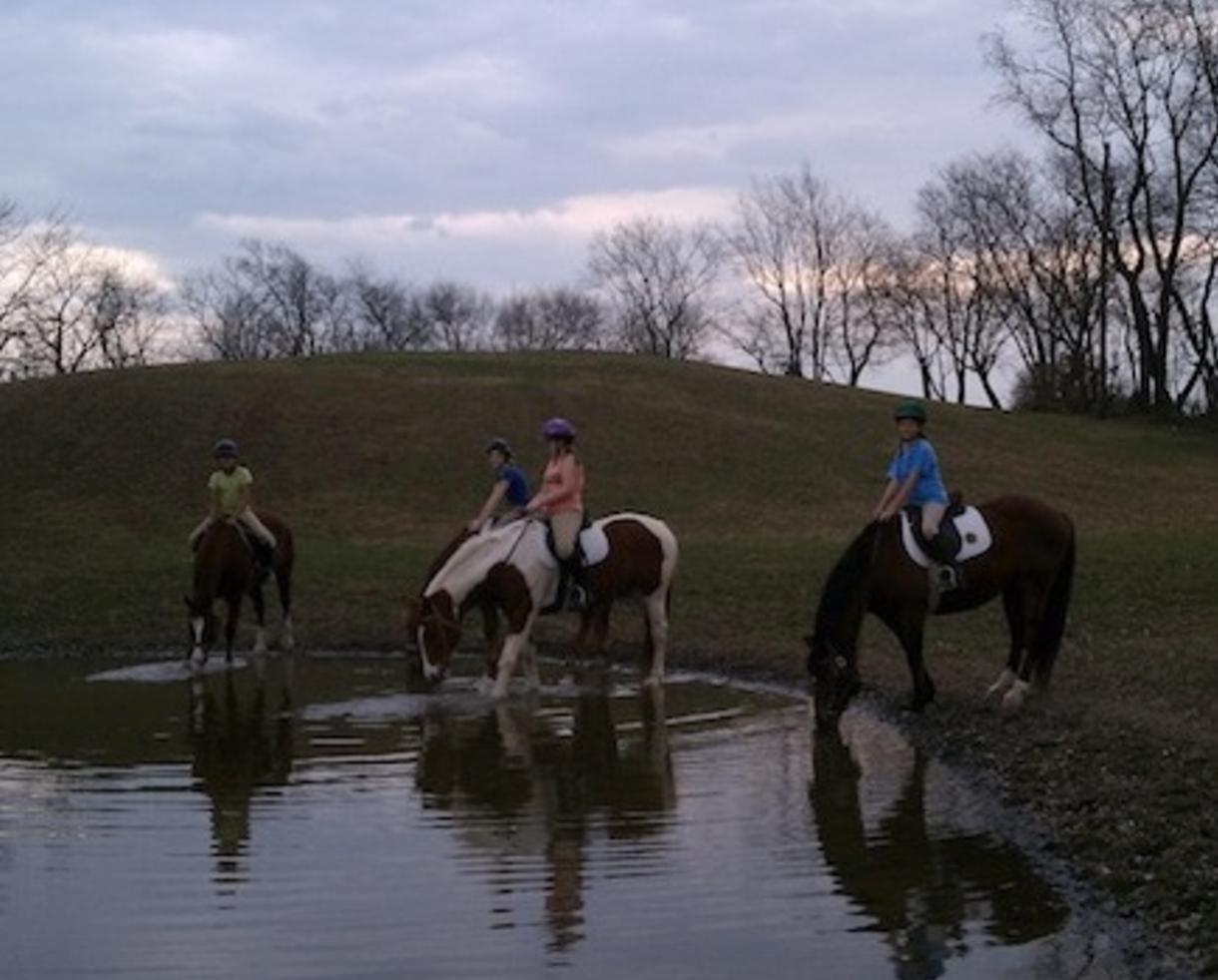 $39 for a 75 minute Trail ride and lesson at Waredaca Farm - Laytonsville (35% off)