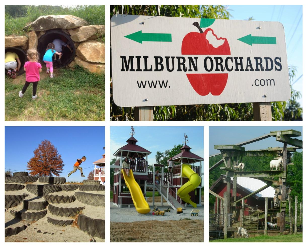 Milburn Orchards Big BackYard Family Fun + Summer Harvest Party Pancake Breakfast - Elkton, MD ($6 Off!)