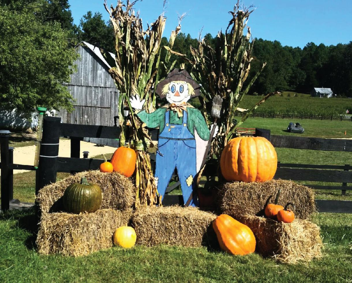 $16 for Two or $30 for Four Admissions to Montpelier Farms & Corn Maze - Upper Marlboro (Up to 38% Off)