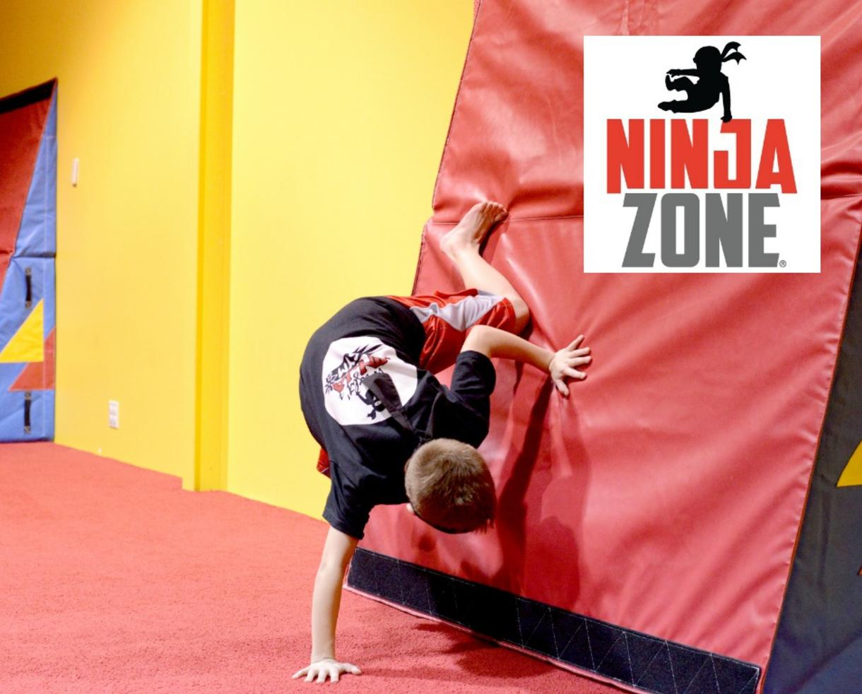 NinjaZone 12-Week Fall Classes at All Pro Gymnastics