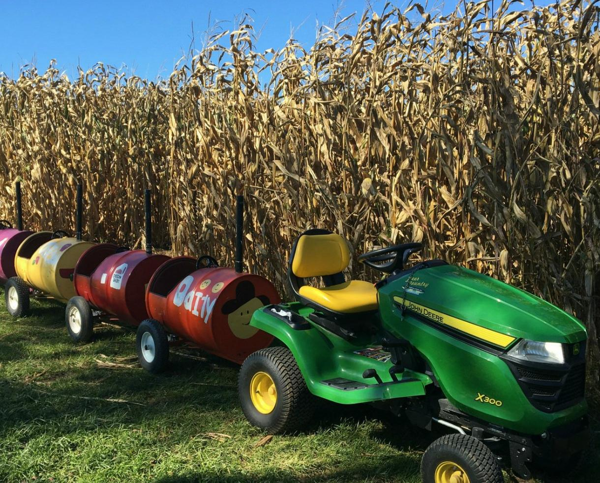 Child Corn Maze Admission at Oregon Dairy