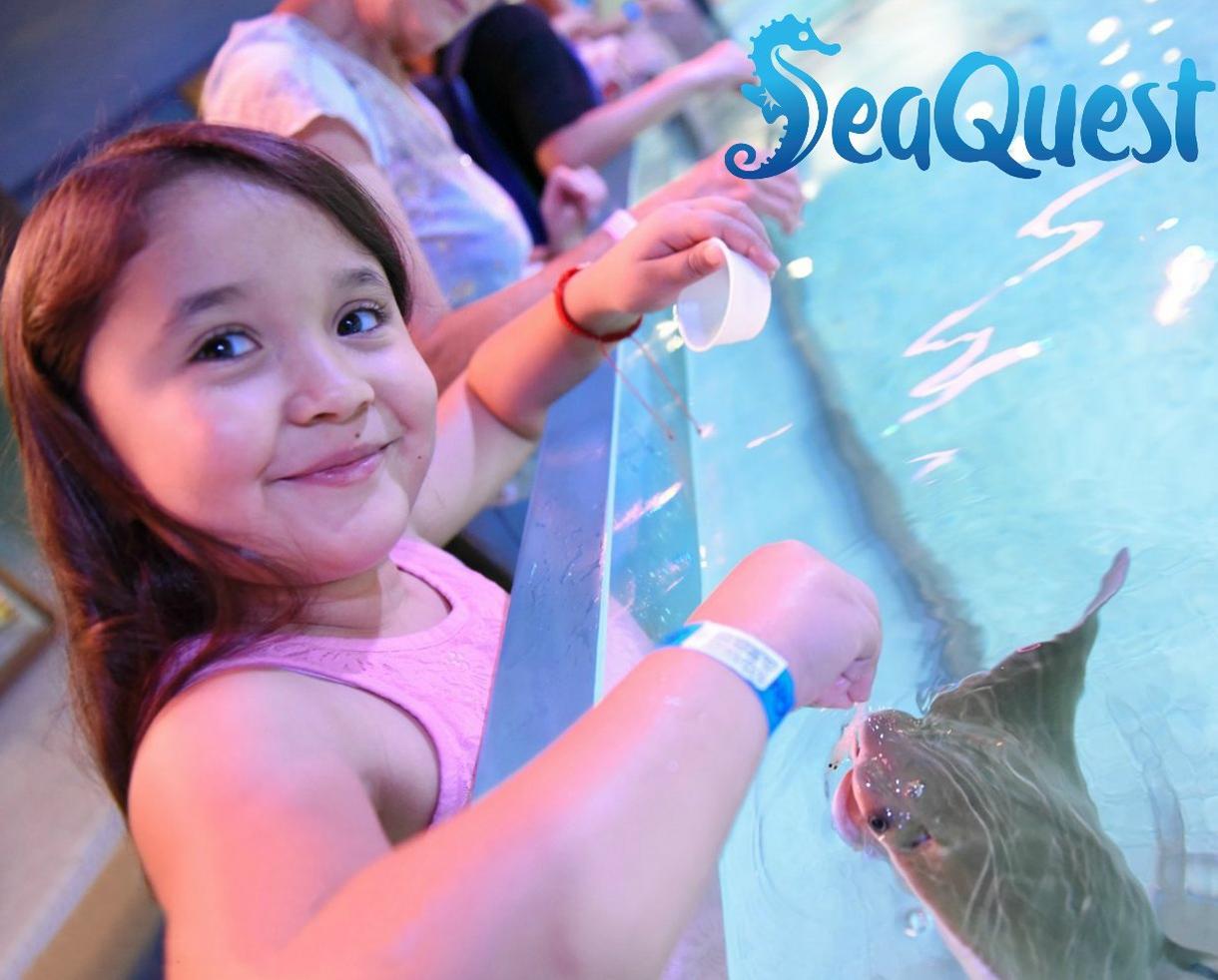 SeaQuest Annual Passport + 6 Feeding Tokens