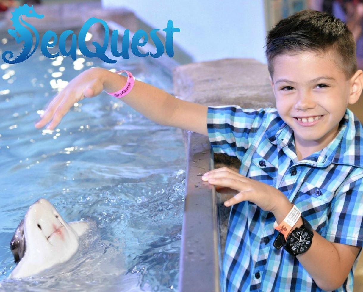 SeaQuest Ultimate Weekday Experience Package