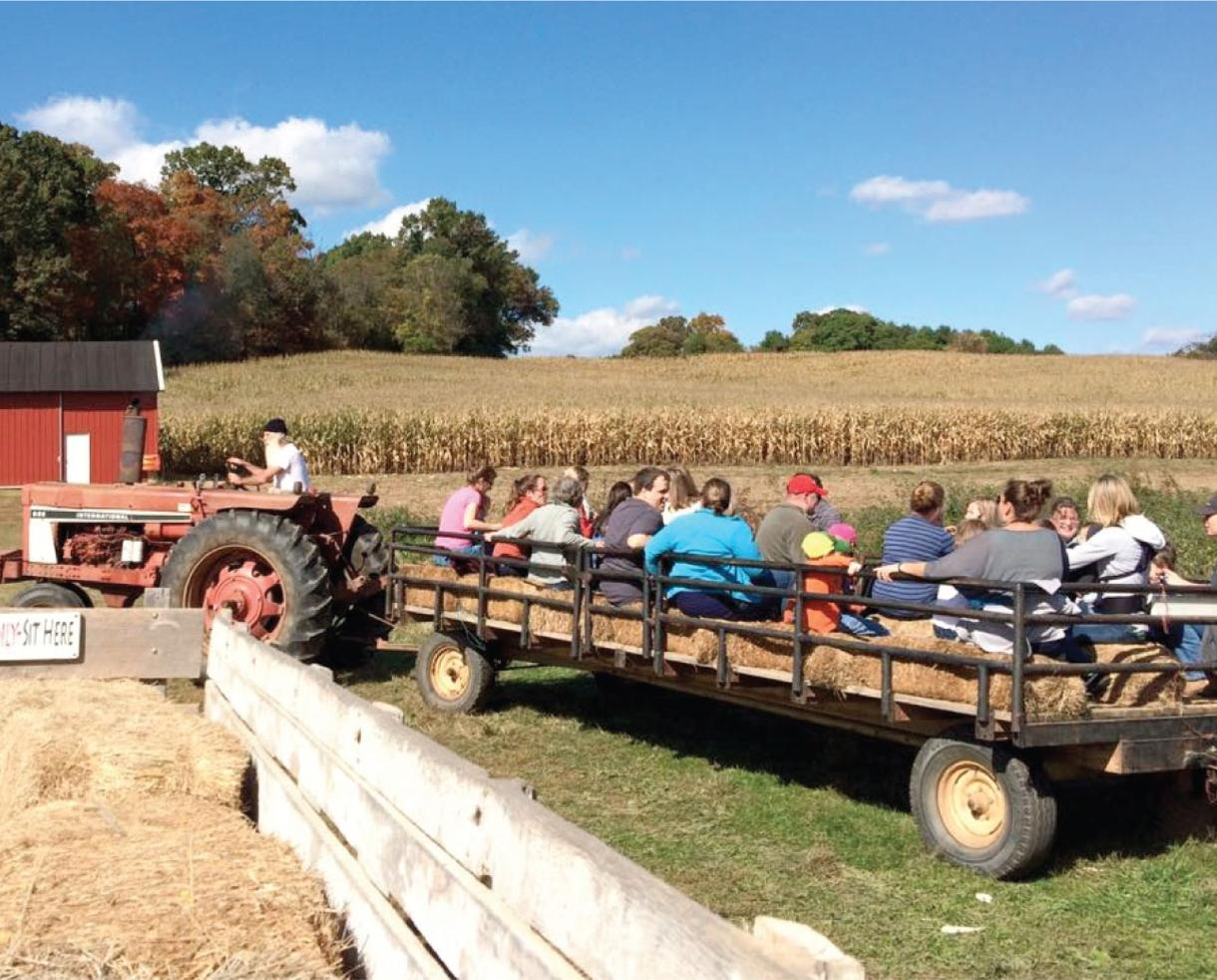 $7 for Sharp's Farm Fun for 2 - Hayride, Pick Your Own Pumpkins and Popcorn! Brookeville, MD (47% Off)