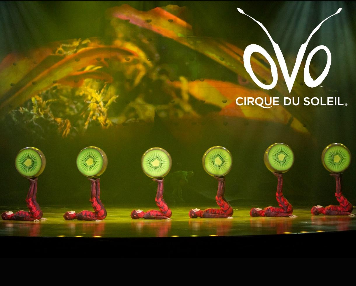 20% Off Tickets to Cirque du Soleil's OVO - Baltimore and Fairfax