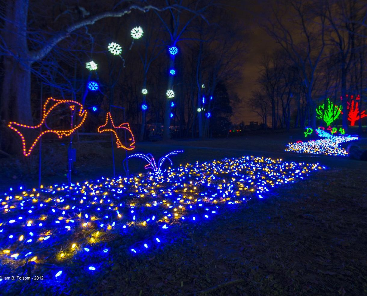 Two Admissions to Meadowlark's Winter Walk of Lights