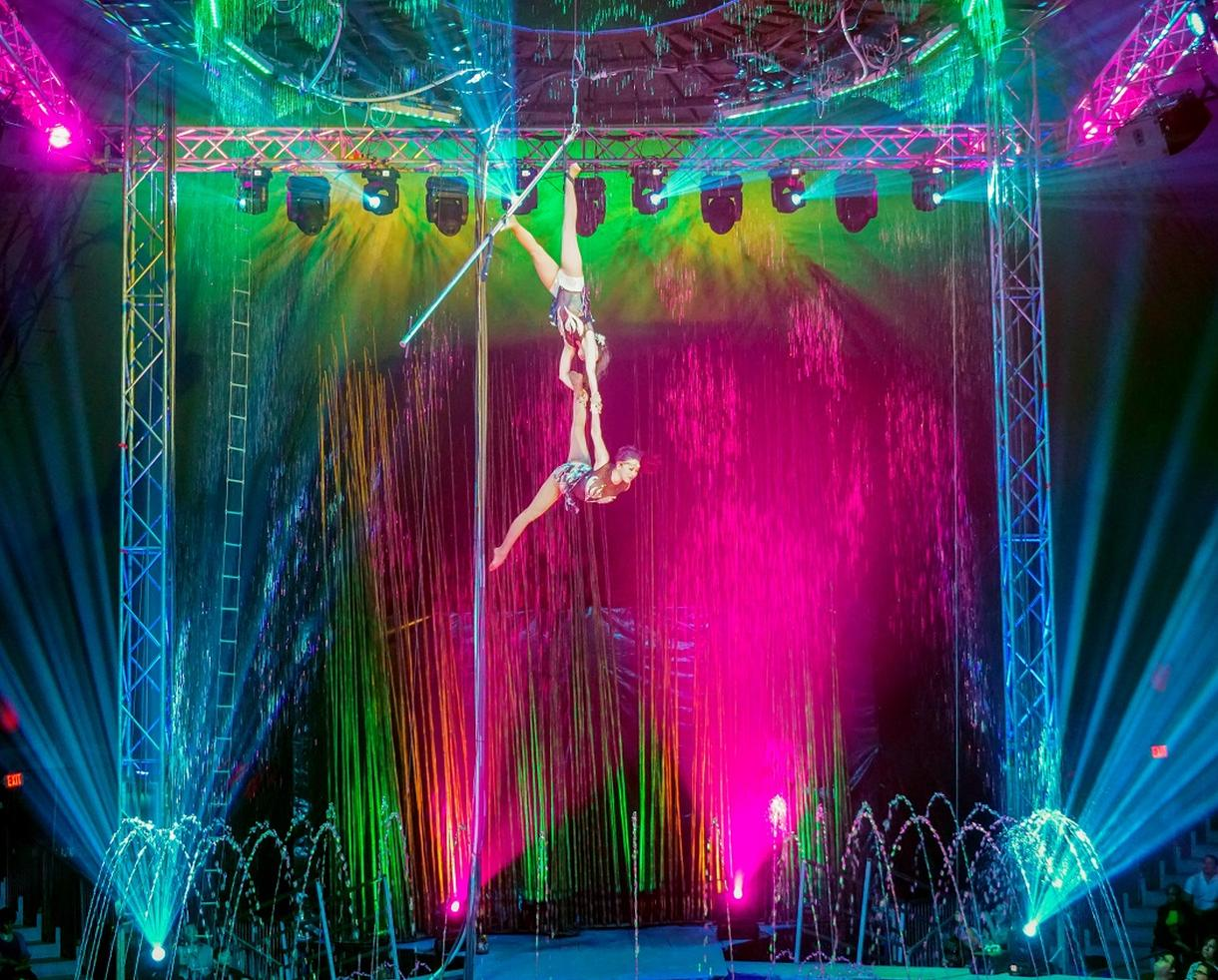 Cirque Italia WATER CIRCUS at Potomac Mills: Child Ticket