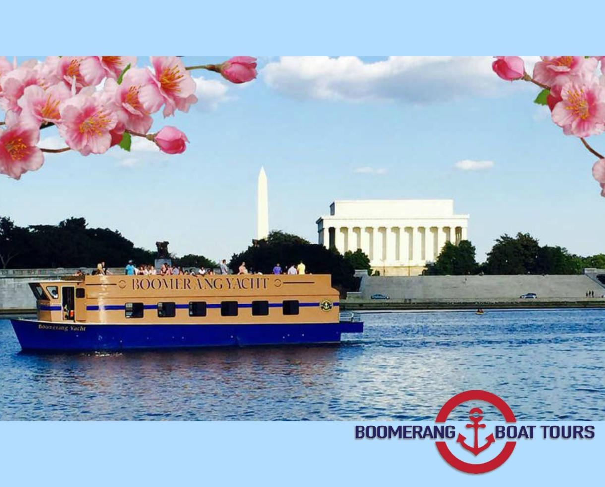 Boomerang Cherry Blossom Cruise Ticket