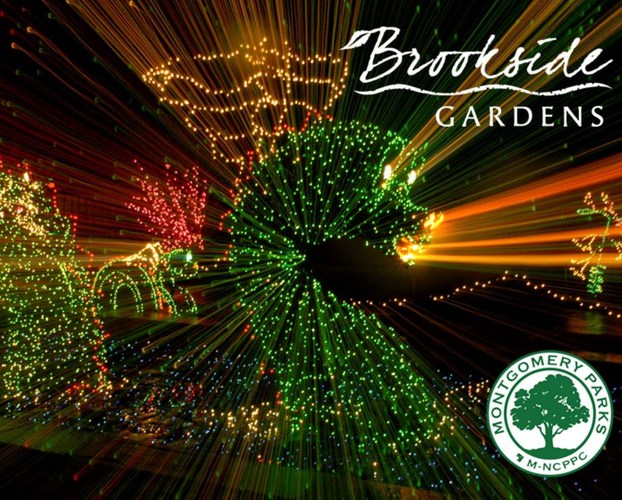 $15 for Garden of Lights Admission for 1 Car at Brookside Gardens - Monday thru Thursday, select dates ONLY