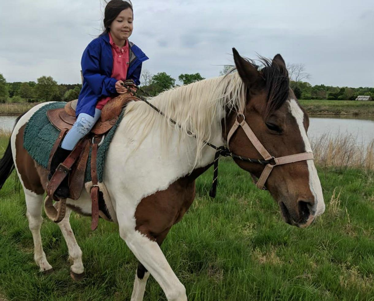Castle Strasburg Horseback Riding Lessons or Trail Rides for One Person