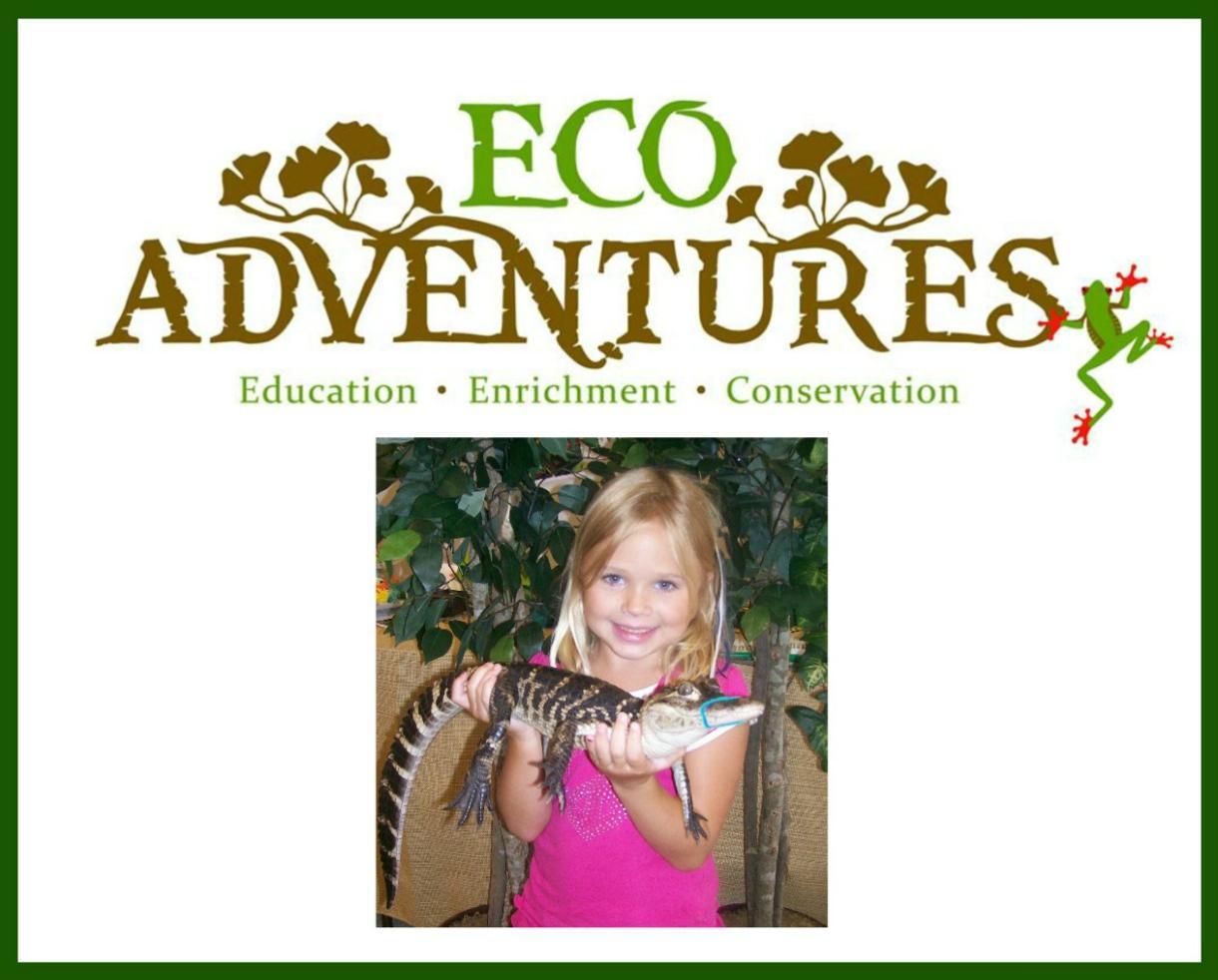 EcoAdventures Summer Fun Kindergarten Camp