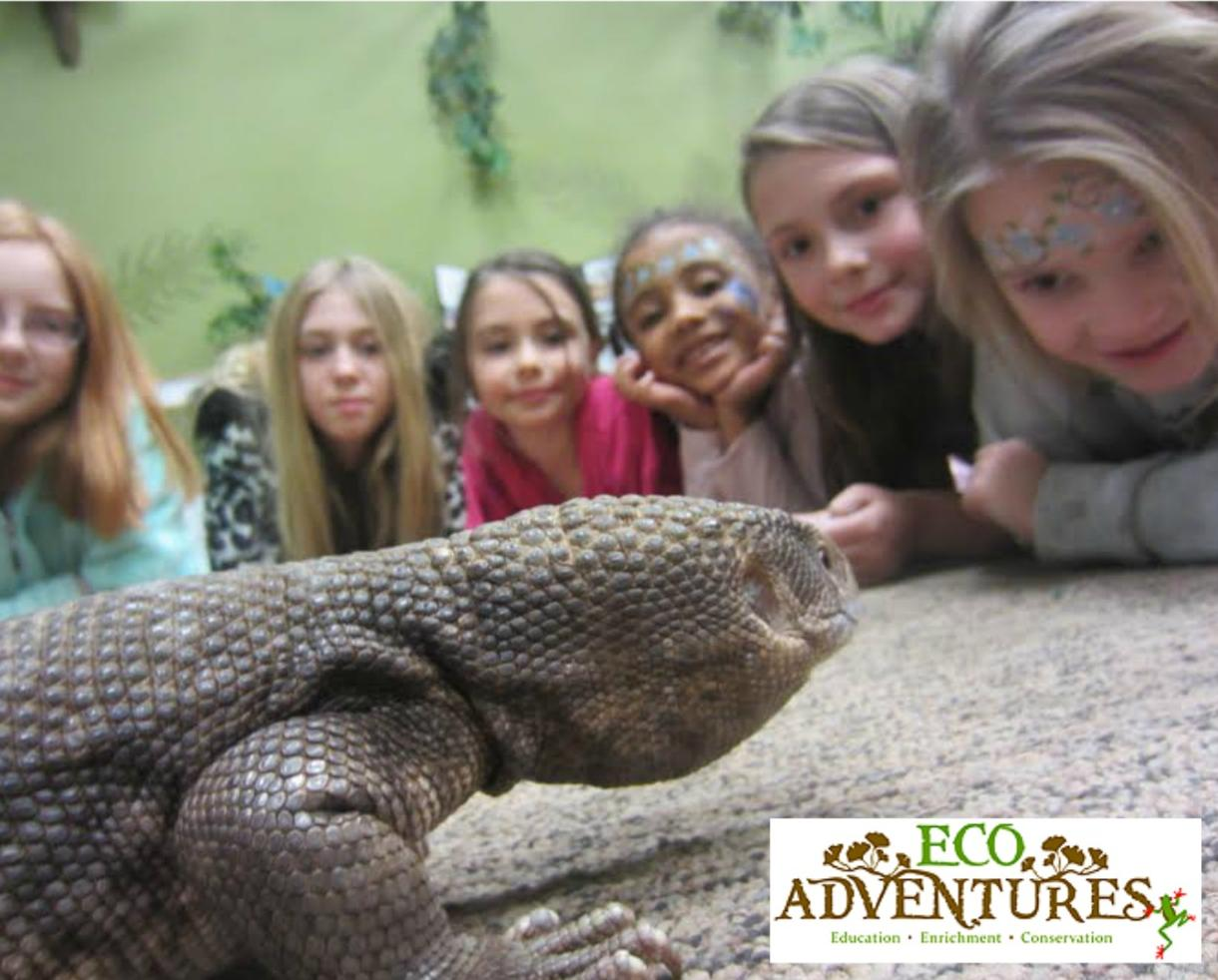 $250 for Interactive Animal Party by EcoAdventures - Comes to You! ($325 Value - 24% Off)