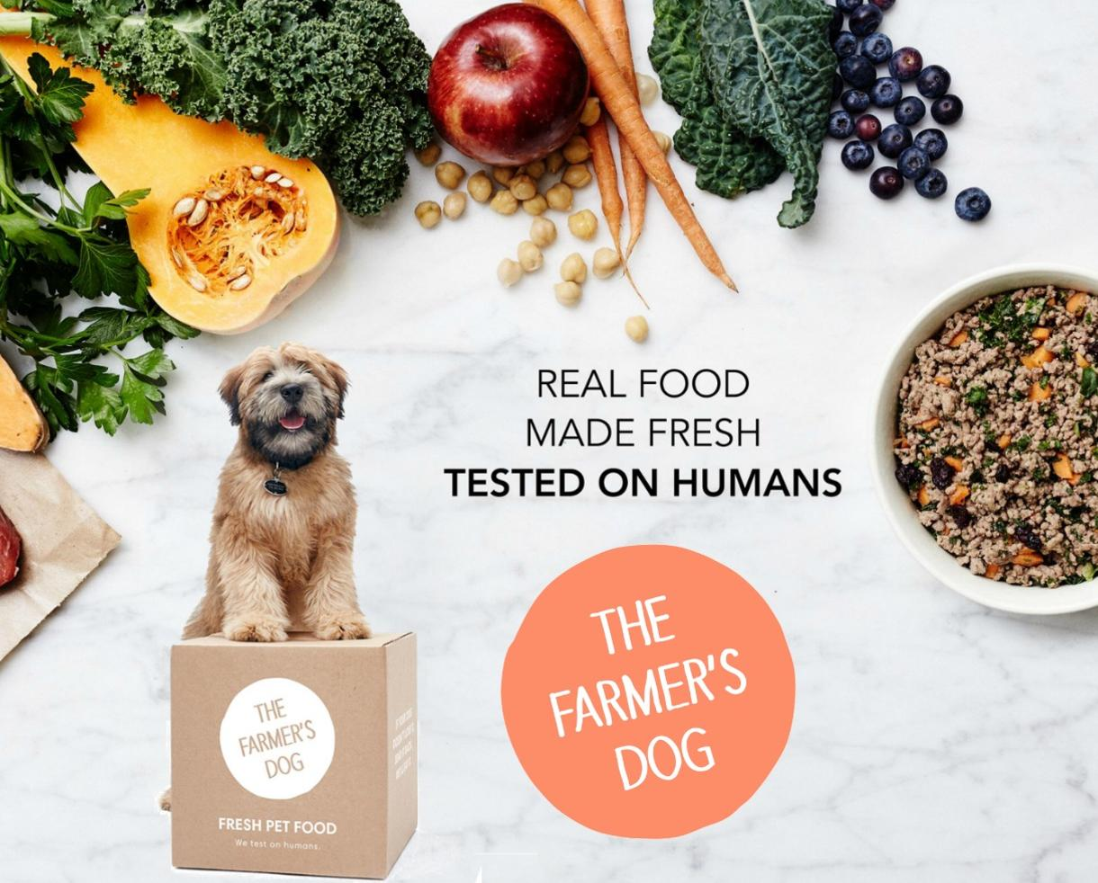 Deal 50 Off Fresh Healthy Human Grade Dog Food