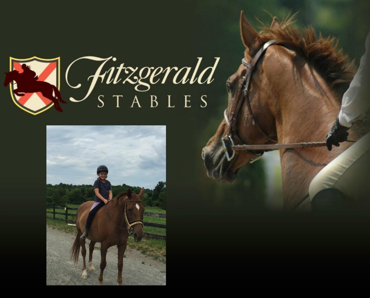 $250 for Fitzgerald Stables Horse Camp for Ages 5-16 - New Full Day Option! - Leesburg ($50 Off)
